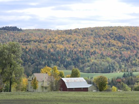 Farm in Newport 275